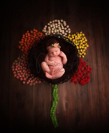 Jess Staniforth Newborn Shoot
