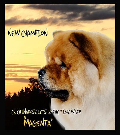 MAGENTANEWCH copy.jpg