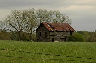 South Carolina Landscapes