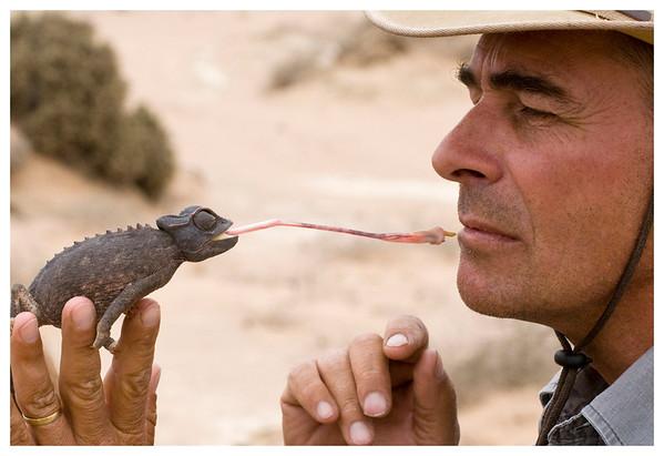 Namibia - Wildlife and landscape