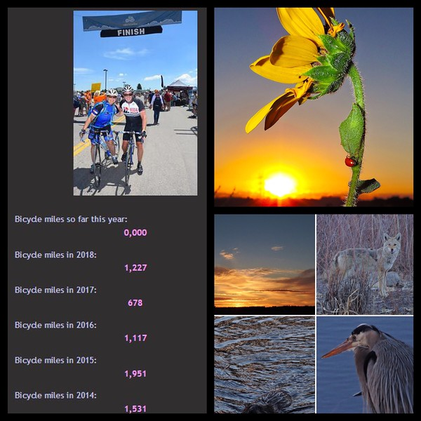 Awesome 2018 mileage to top in 2019!