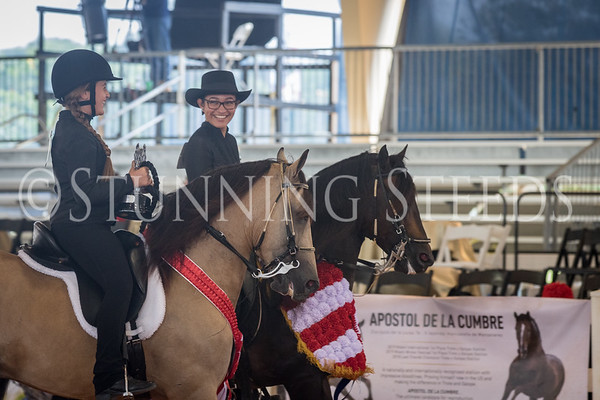 305-Equitation Youth Championship