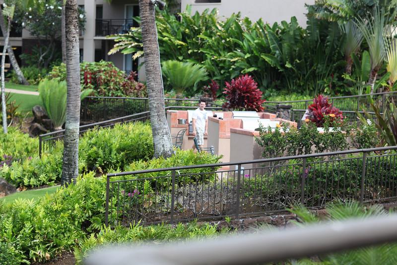 Kauai_D5_AM 010.jpg