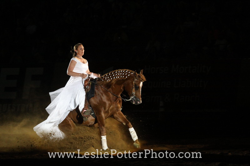 2014 Freestyle Reining World Championship
