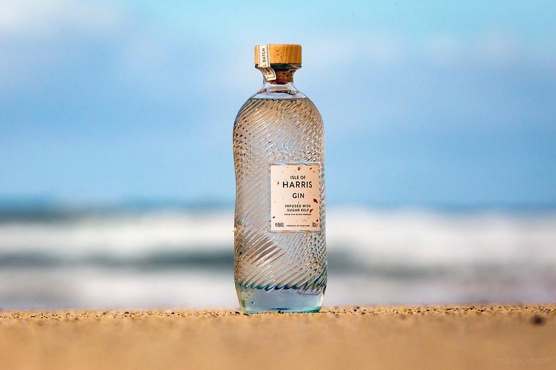 HarrisGin_on_the_beach_MoThomson_medium_res.jpg