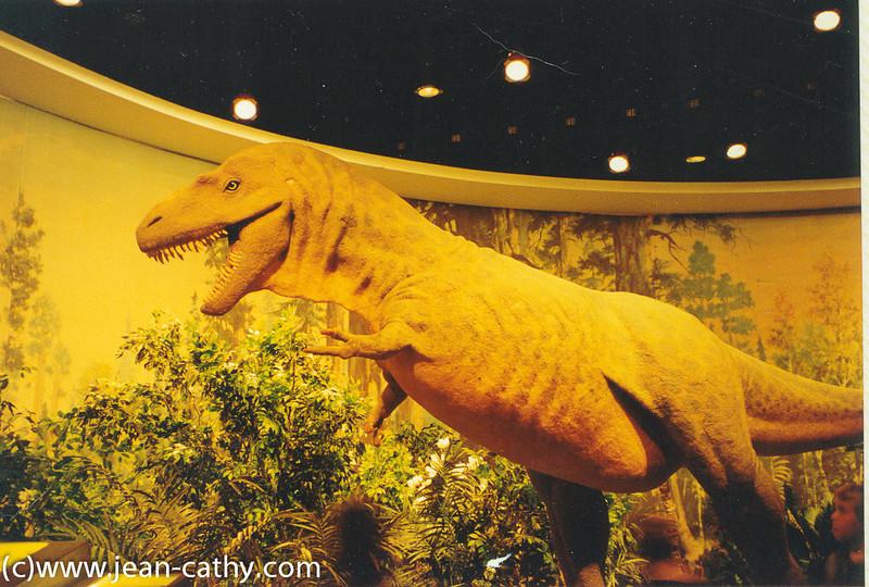Alberta 1996 -  (26 of 33)