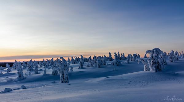 2015.12_Riisitunturi&Kuusamo