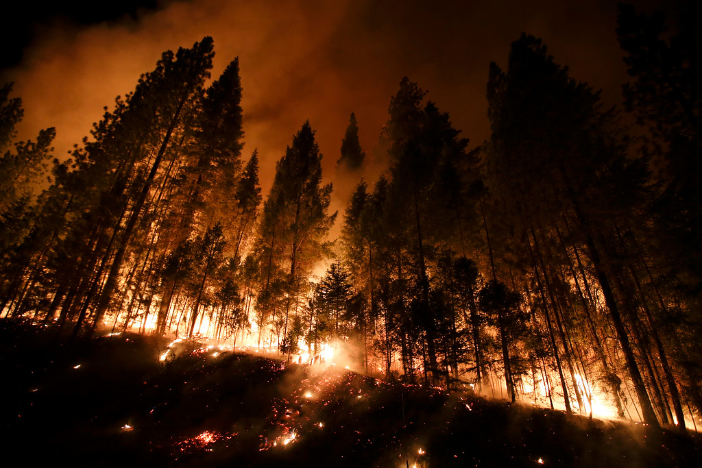 . Trees burn in a burnout fire as firefighters continue to battle the Rim Fire near Yosemite National Park, Calif., on Sunday, Aug. 25, 2013. Fire crews are clearing brush and setting sprinklers to protect two groves of giant sequoias as a massive week-old wildfire rages along the remote northwest edge of Yosemite National Park. (AP Photo/Jae C. Hong)