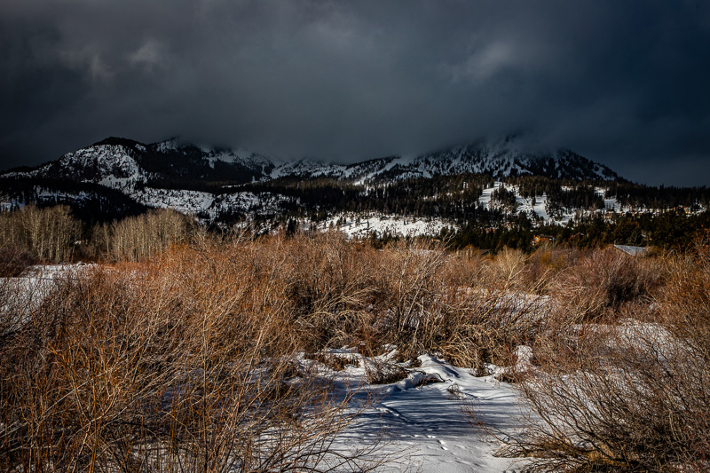December 21 - Chaotic clouds over the mountaintop descending on a sunny field of naked branches.jpg