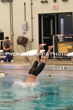 La Porte District Swim Meet (Day2) 1-28-2011