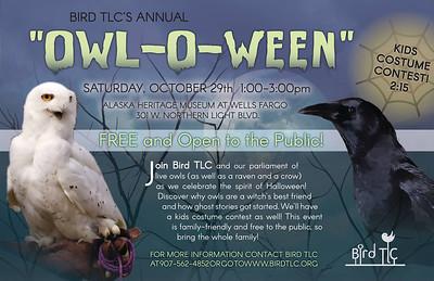 2016 Owl-o-ween
