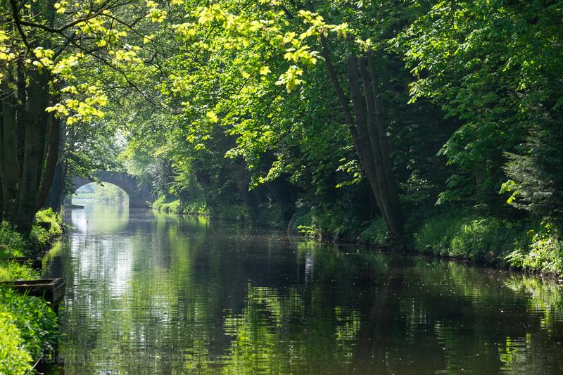 Ripon canal 7 May 18-9.jpg
