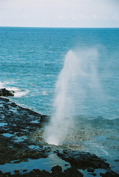 Hawaii-555.jpg