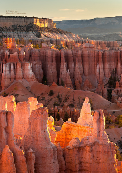 Bryce, Zion, Valley of Fire, and Death Valley