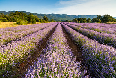 Provence II, France