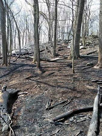 5-2-18 Mutual-Aid Brush Fire, Indian Hill Road (Mohegan) Photos By Joe Maffettone