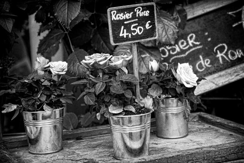 Paris fleurs B&W 0515.jpg