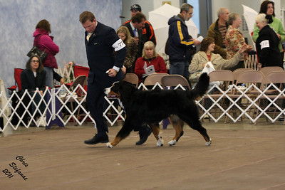 12-18mo Puppy Dog PVBMDC Saturday 2/19/2011