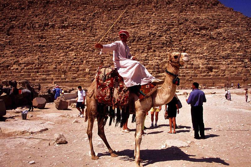 402 Camel Driver04.JPG