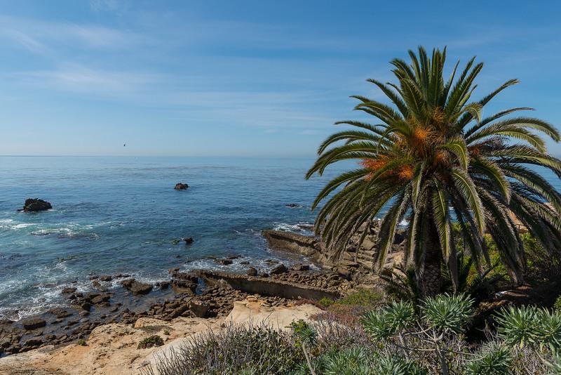 California0020.jpg