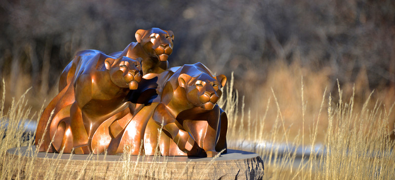 Loveland - Benson Sculpture Garden