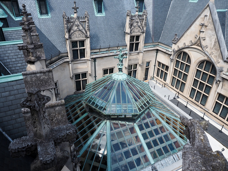 Biltmore house roof