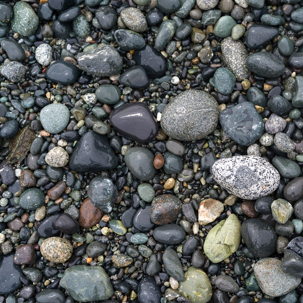 High angle view of pebbles on Spiral Beach, Victoria, British Columbia, Canada