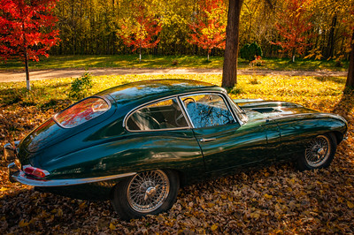 Jags by Briercliffe
