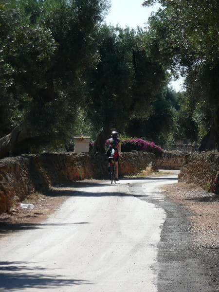 Along the road to Monopoli
