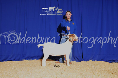 Southwest Jr. Livestock Show