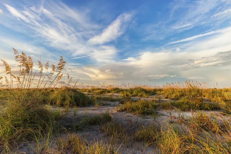 Golden hour in sand dune at Fort De Soto