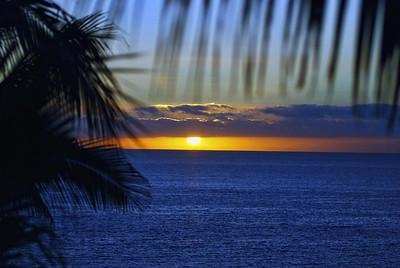 Cabo San Lucas & Huntinton Beach