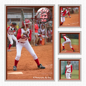 Spring Sports Collages 2014-2015