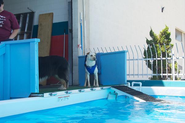 Pool - 8 Sept 2010