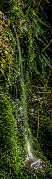 Der Weg zum Wasserfall war geschlossen darum gibt es die kleine weitere Variante
