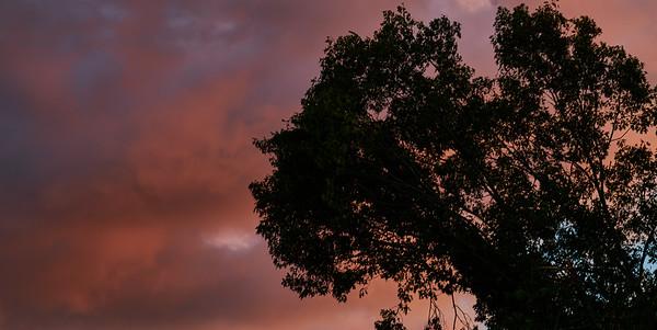 Clouds, Sunrise, Sunsets