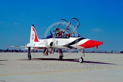 U.S. Air Force T-38 Talon Airplanes in Bicentennial Color Scheme
