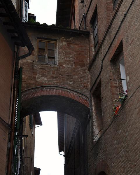 Siena 2013 - 036.jpg