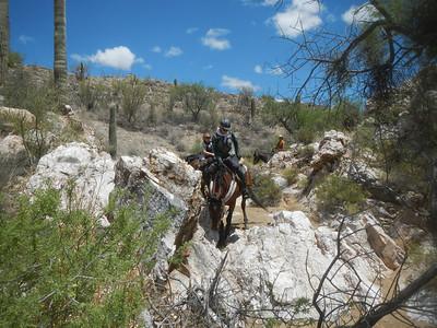 Apache Trail 2013