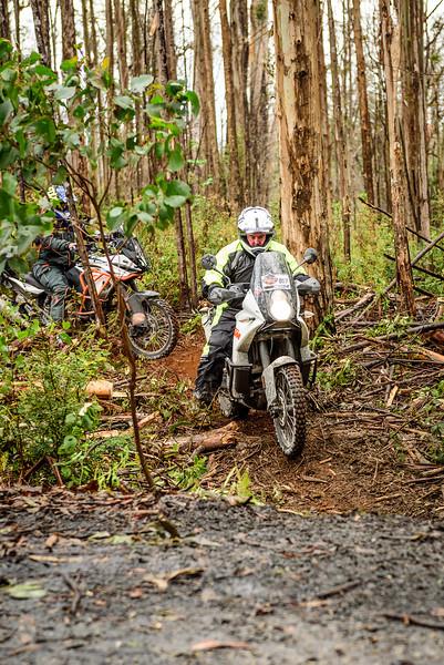 2019 KTM Australia Adventure Rallye (271).jpg