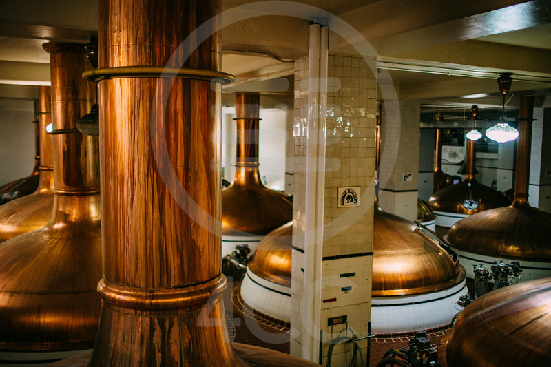 coors_brewery_tour-7459.jpg
