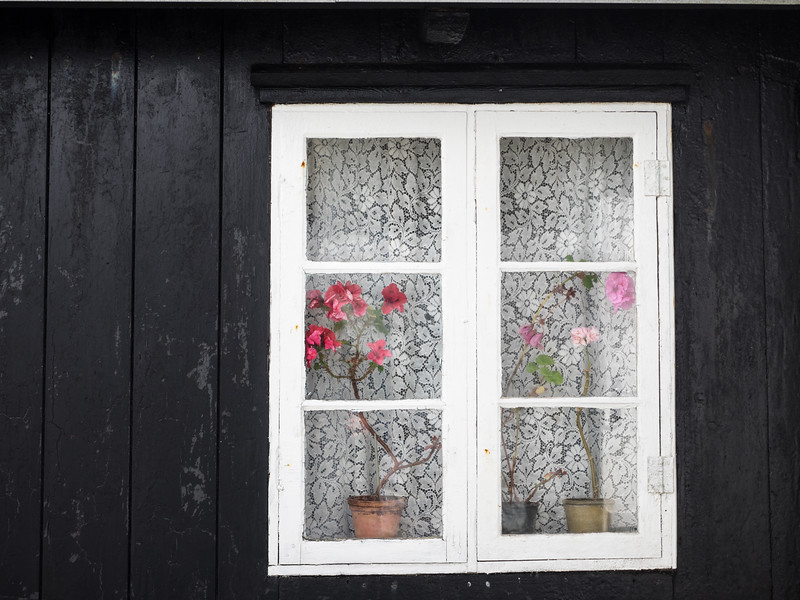A pretty display in the window of one of the houses in Nolsoy.