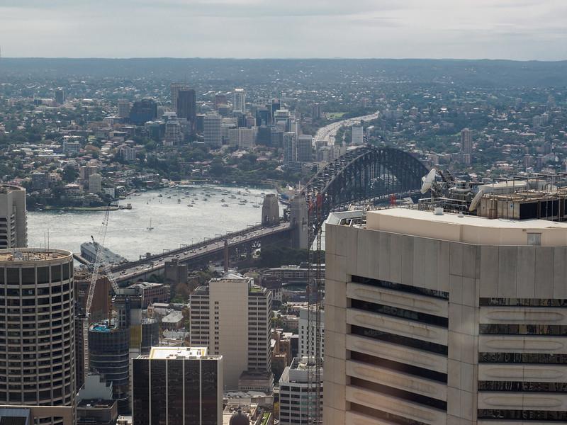 Sydney Tower looking towards Harbour Bridge