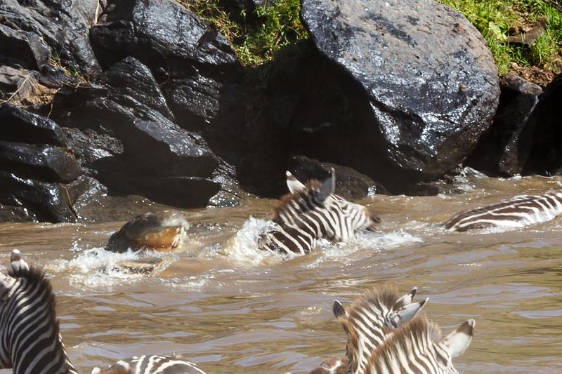 Kenya 2015-02729.jpg