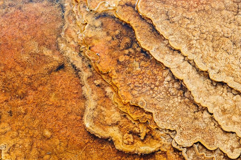 20130511-12 Yellowstone 128.jpg