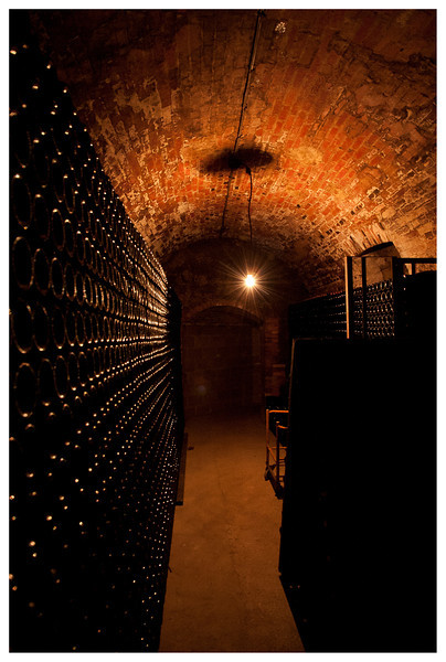 Champagne cellar - served as bomb shelter in WWI