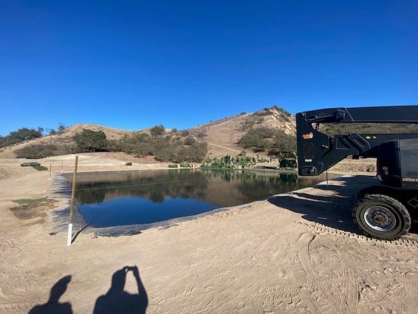 Pond 28.jpg
