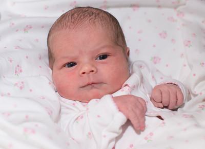 Milly Newborn Pics