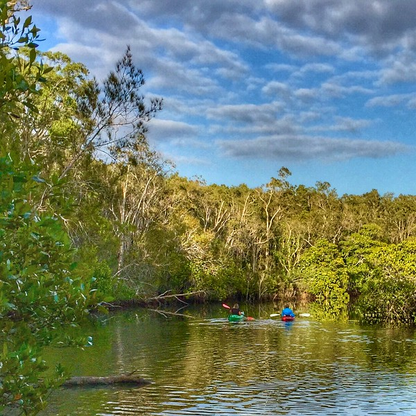 Kayakers on Wooroi Creek.jpg