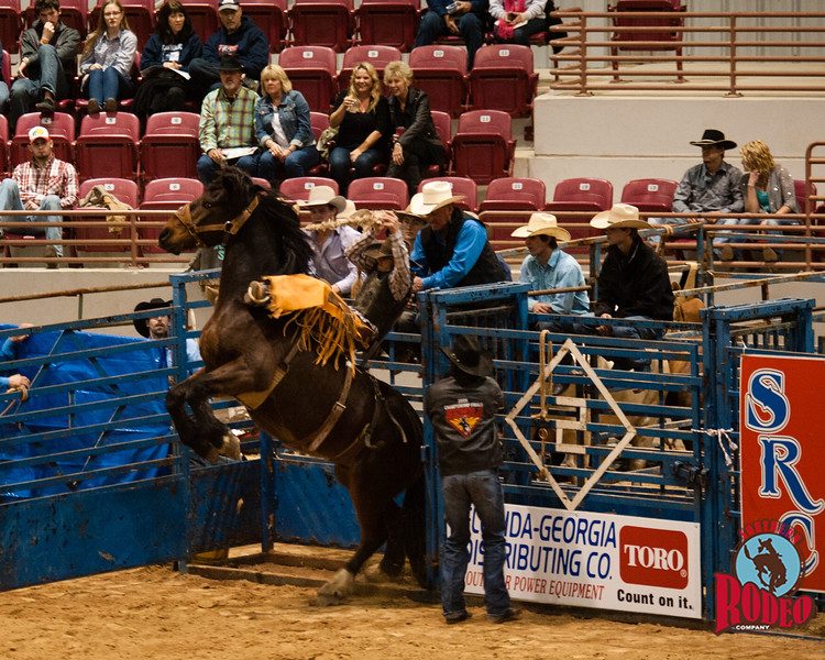 Rodeo 2016